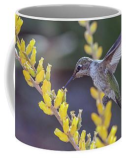 Hummingbird 6750-041818-1cr Coffee Mug