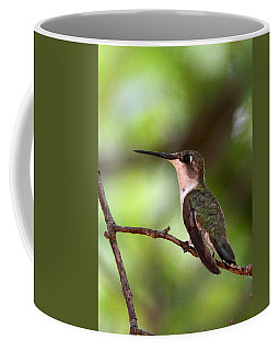 Hummingbird - Afternoon Ruby Coffee Mug by Travis Truelove