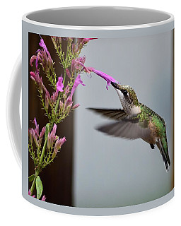 Hummingbird And Agastache Coffee Mug