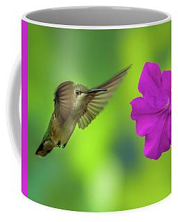 Hummingbird And Flower Coffee Mug