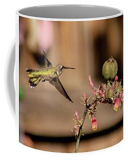 Hummingbird And Red Yucca Coffee Mug