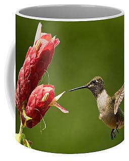 Hummingbird Approaches Flower Coffee Mug