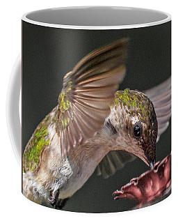 Hummingbird. Coffee Mug