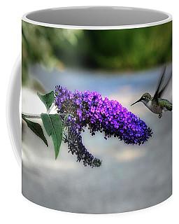 Coffee Mug featuring the photograph Hummingbird by Elaine Manley