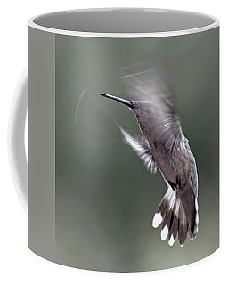 Hummingbird In The Country Coffee Mug