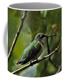 Hummingbird On Branch Coffee Mug