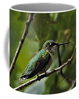 Hummingbird On Branch Coffee Mug