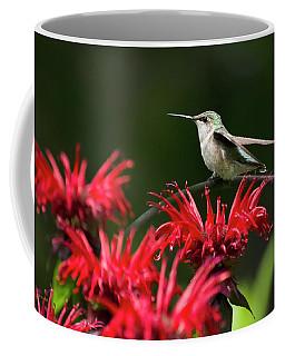 Hummingbird On Flowers Coffee Mug