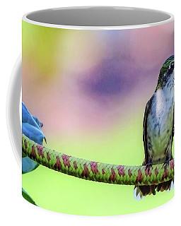 Hummingbird On Watch Coffee Mug