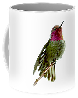 Hummingbird Portrait T1 Coffee Mug