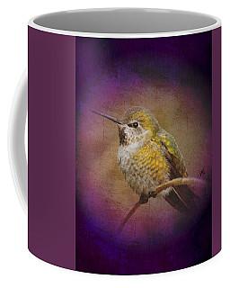 Hummingbird Rufous Coffee Mug