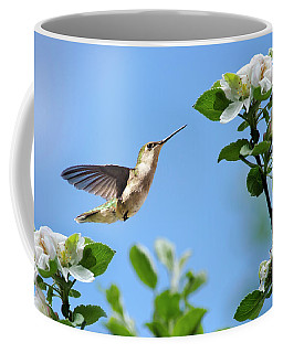 Hummingbird Springtime Coffee Mug
