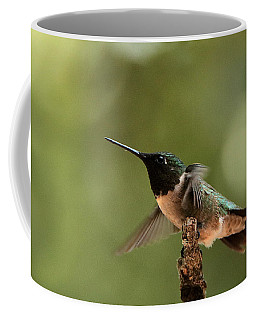 Hummingbird Take-off Coffee Mug