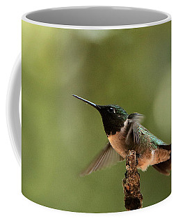 Hummingbird Take-off Coffee Mug