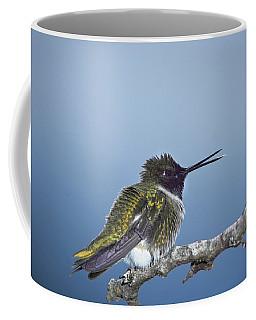 Hummingbird12 Coffee Mug