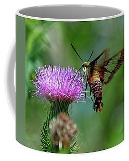 Hummingbirdbird Moth Dining Coffee Mug