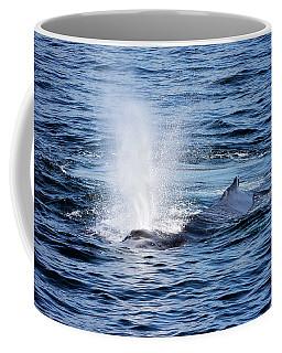 Humpback Blow Coffee Mug