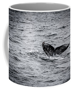 Humpback Whale Tail Coffee Mug