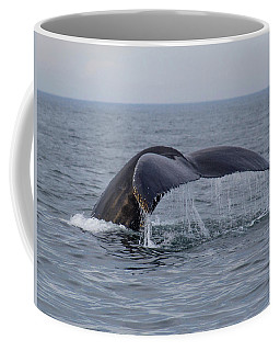 Coffee Mug featuring the photograph Humpback Whale by Trace Kittrell