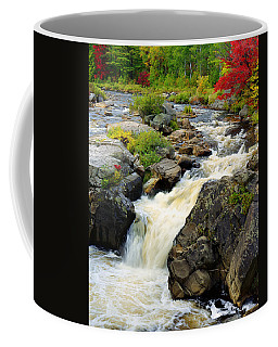 Hungary Trout Falls Coffee Mug