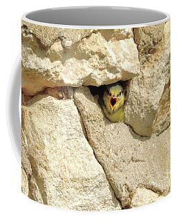 Hungry Chick Coffee Mug