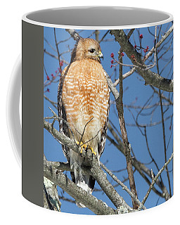 Coffee Mug featuring the photograph Hunter Square by Bill Wakeley
