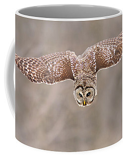 Hunting Barred Owl  Coffee Mug