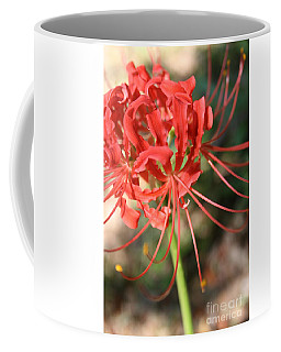Hurricane Lily Coffee Mug