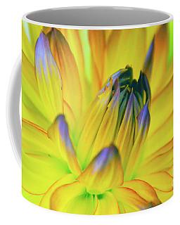 Husky Colors Coffee Mug