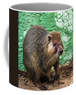 Hutia, Tree Rat Coffee Mug