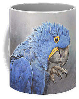 Hyacinth Macaw Coffee Mug
