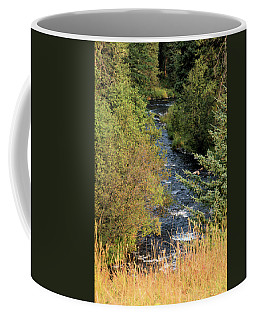 Hyalite Creek Overlook Coffee Mug