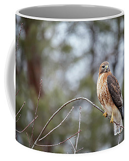 Coffee Mug featuring the photograph Hybrid Branch by Brian Hale