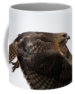 Coffee Mug featuring the photograph Hybrid Hawk Flyby  by Brian Hale