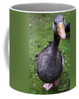 Hyde Park Goose Coffee Mug