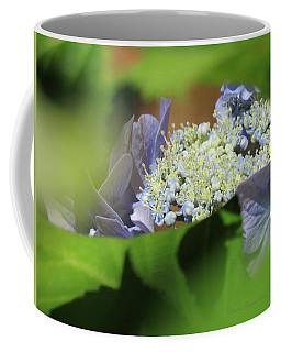 Hydrangea Whisper - Floral Art From The Garden Coffee Mug by Brooks Garten Hauschild