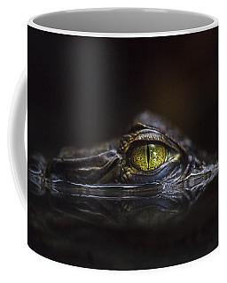 Alligator Coffee Mugs