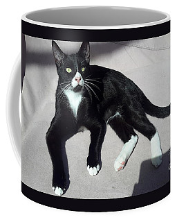I Am Ceasar. Photo Of Black White Kitten Coffee Mug