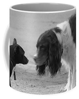 I Am The Flash Coffee Mug