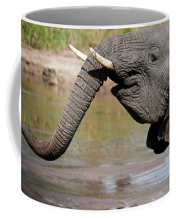 Coffee Mug featuring the photograph I Feel Happy by Mary Lee Dereske