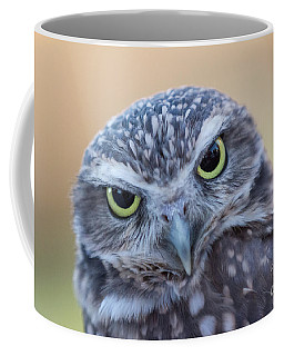 I Give A Hoot Coffee Mug