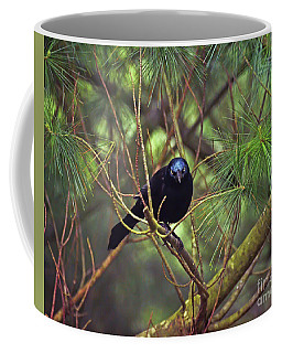 Coffee Mug featuring the photograph I Have My Eyes On You - Grackle In The Pines by Kerri Farley