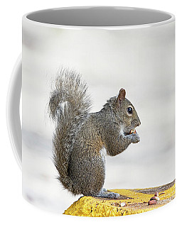 Coffee Mug featuring the photograph I Have My Nuts by Deborah Benoit