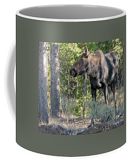 I Heard It Coffee Mug