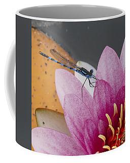 I Know You Coffee Mug