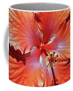 I Love Orange Flowers 2 Coffee Mug