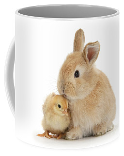 I Love To Kiss The Chicks Coffee Mug