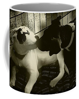 Coffee Mug featuring the photograph I Love You by Diana Mary Sharpton