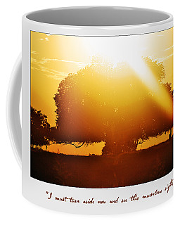 I Must Turn Aside Now And See This  Marvelous Site Coffee Mug