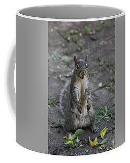 Coffee Mug featuring the photograph I Picked A Sunflower For You by Trina Ansel
